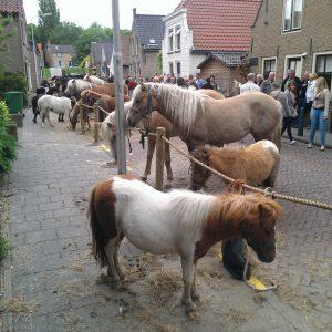 paardenmarkt1